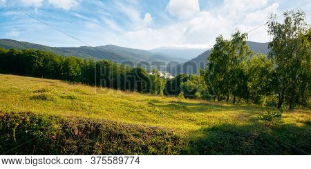 Trees On The Meadow In Mountains. Beautiful Morning Scenery. Clouds On The Sky. Ridge In The Distanc