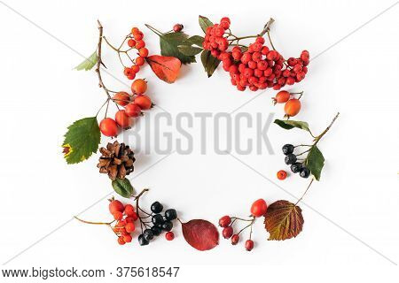 Autumn Natural Wreath Of Leaves, Cones, Berries On A White Background, Place For Text, Autumn Concep