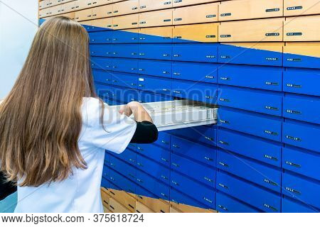 An Attractive Young Brunette Pharmacy Trainee Checks For A Prescription Drug In The Alphabetical Med