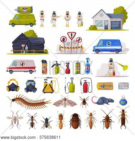 Home Pest Control Service Set, Exterminating And Protecting Equipment, Harmful Insects Vector Illust