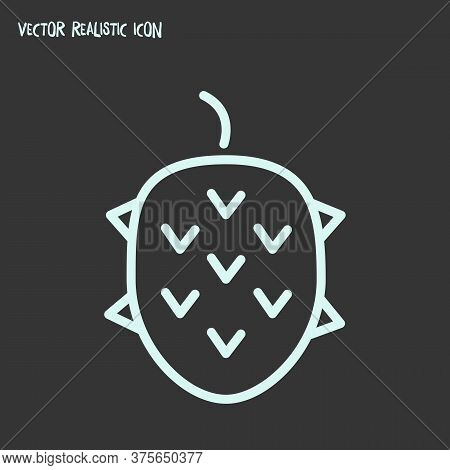 Lychee Icon Line Element. Vector Illustration Of Lychee Icon Line Isolated On Clean Background For Y