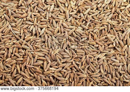 Cumin Seeds Top View Background , Cumin Seeds Background