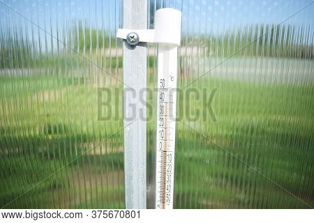 Thermometer In A Polycarbonate Greenhouse, Heat 40 Degrees Celsius