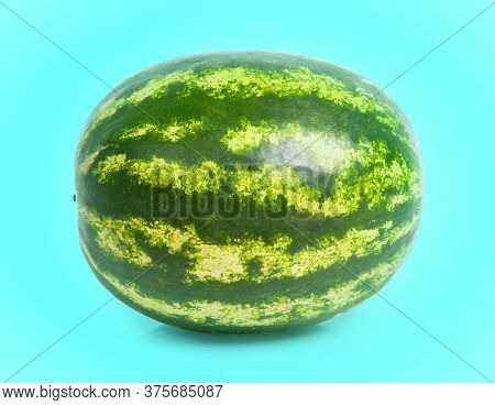 One watermelon isolated over cyan background