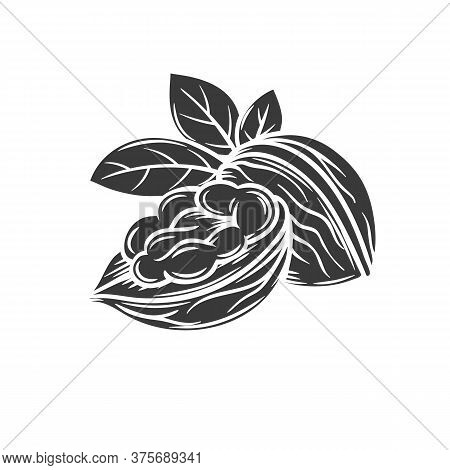Walnut Glyph Icon For Template Label, Packing And Emblem Farmer Market Design. Retro Sketch Style.
