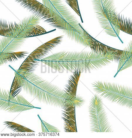 Tropical Feather Fluff Vector Seamless Ornament. Chic Fashion Print. Tribal Boho Feather Fluff Texti