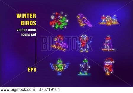 Winter Birds Neon Signs Set. Cute Cartoon Penguin, Owl In Christmas Hat, Bullfinch. Night Bright Adv