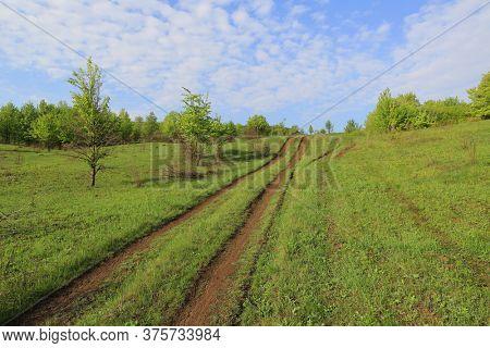 Morning landscape with dirt road on green hillside