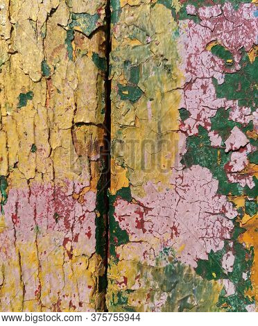 Crumbling Painted Wood Abstract Background. Pink Yellow And Green Colors. Old Wooden Plank Grungy Te