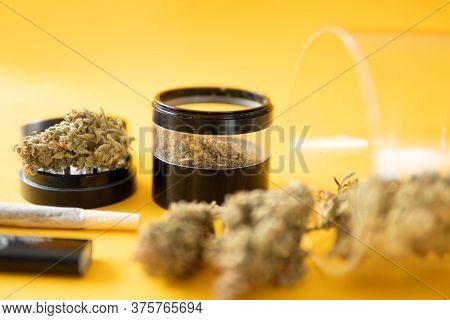 Cannabis Nature Bud. Marijuana Weed Bud And Grinder. Joint Weed. Indica Medical Health.