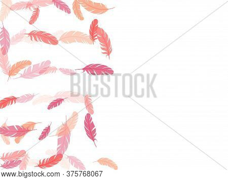 Glamour Pink Flamingo Feathers Vector Background. Fluffy Twirled Feathers On White Design. Lightweig