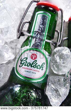 Bottles Of Grolsch Beer In Crushed Ice