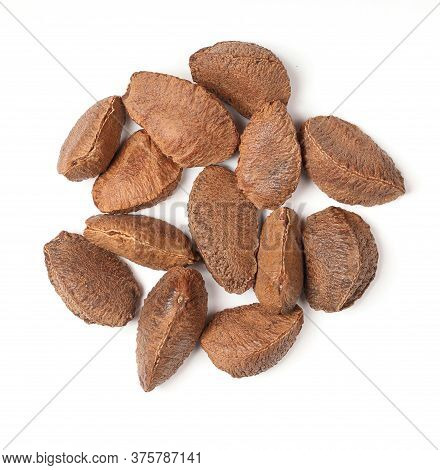 Brazilian Nut In Peel. Bertholletia On Isolated White Background. Circle Composition