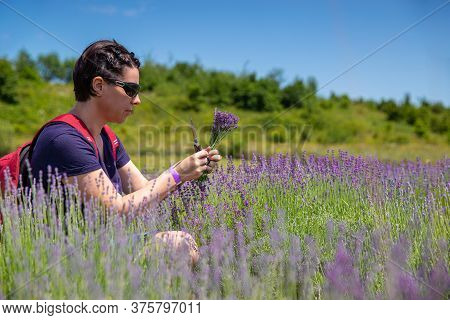 Woman Holding A Lavender Bouquet In The Lavender Field
