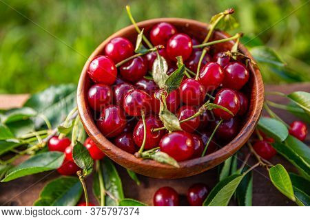 Close Up Of Delicious Sour Cherries In Wooden Bowl