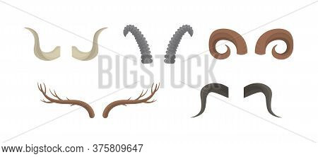 Set Of Horn Of Different Animals Isolated On A White Background. Horny Hunting Trophy Of Argali Shee