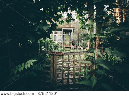 View Of A Cozy Cryptic Wooden Wicket In A Deforused Foreground In A Tunnel Of Plants And Greenery Wi