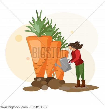 Young Woman Working In Garden Or Farm. Gardening Girl Is Watering A Large Crop Of Vegetables. Vector