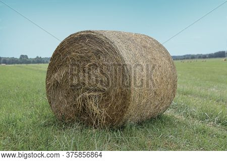 Haystack Wound Into A Roll On A Rural Field.