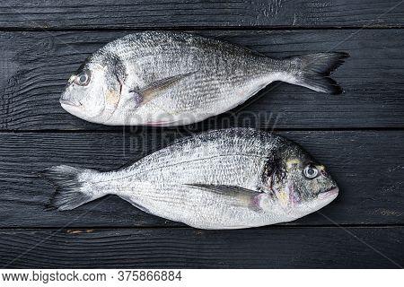 Raw Dorado Or Sea Bream Fish Ob Black Wooden Background Top View.