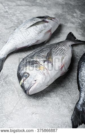 Whole Dorado Sea Bream Fish With Herbs For Grill Over Textured Grey Background  Side View Space For