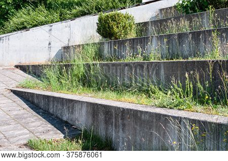 Terrace Of Concrete Steps Grown With Clover, Hawkweed And Grass Next To A Sidewalk In A City