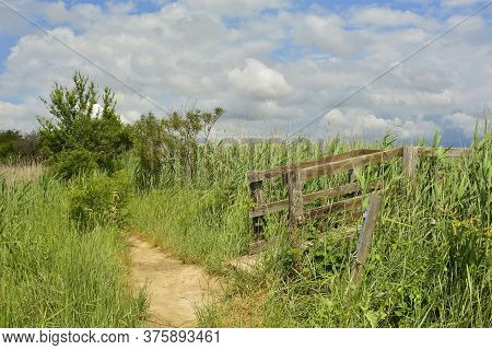 A Small Footpath And The Strart Of A Raised Boardwalk In The Wetlands Of Isola Della Cona In Friuli-