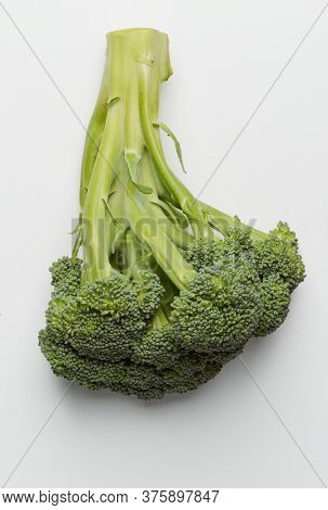 Close Up On A Broccoli Floret On White Background