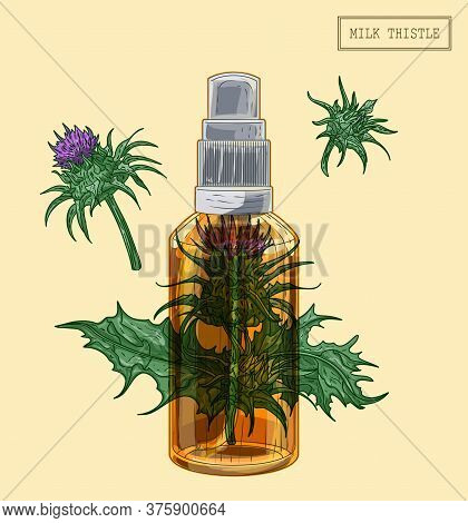 Medical Milk Thistle Flowers And Sprayer, Hand Drawn Illustration In A Retro Style