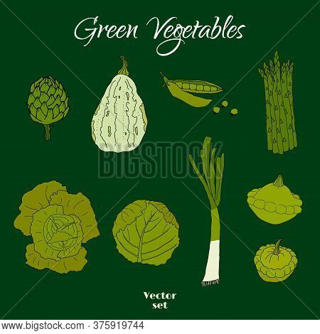 Hand Drawn Doodle Green Vegetables Icons Isolated Set. Vector Illustration. Fresh Organic Eco Food,
