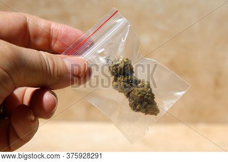 Marijuana. Cannabis. Medical Marijuana. Recreational Marijuana. Cannabis Sativa or Indica flower bud in a clear plastic baggie. Pot is enjoyed world wide both medically a recreationally.