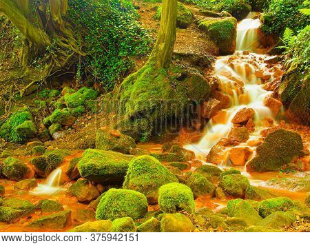 Cascades Of Mineral Water. Red Ferric Mud Of Sediments On Big Boulders Between Green Ferns