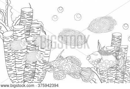 Coloring Page Fish. Sea Life. Undersea World. Vector Illustration.