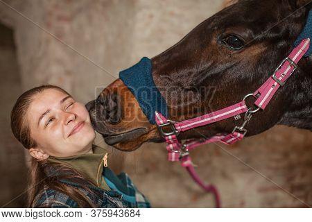 A Young Girl Kisses A Horse. A Horse Kisses His Mistress.