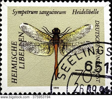 02.11.2020 Divnoe Stavropol Territory Russia The Postage Stamp Germany 1991 Goldsmith Ruddy Darter S