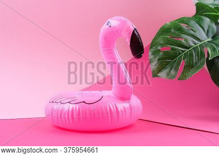 Inflatable Pink Mini Flamingo And Tropical Leaf Monstera On Pink Background. Summer Background. Crea