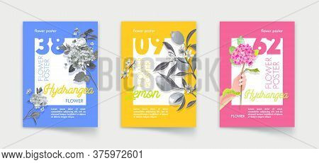 Set Of Posters With Lemon Fruits And Hydrangea Flowers With Leaves On Branches. Florist Shop, Organi