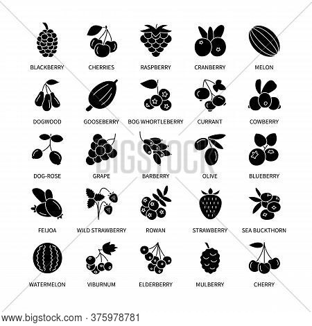 Berries Silhouette Vector Icons Set. Business, Analysis, Design Elements Berries, Fresh Healthy Prod