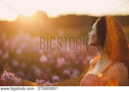 Girl On Blooming Sally Flower Field At Sunset. Lilac Flowers And Woman. Soft Selective Focus With Su