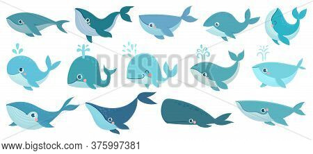 Cute Whales. Marine Life Animals, Underwater Blue Whales, Childrens Icons For Stickers, Baby Shower,