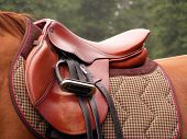Beautiful red leather english saddle with stirrups on brown horse poster