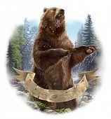 Aggressive bear poster