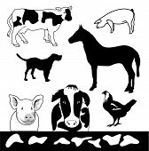 Farm Animals is hand drawn original artwork. The vector file is in AI-EPS8 format. poster