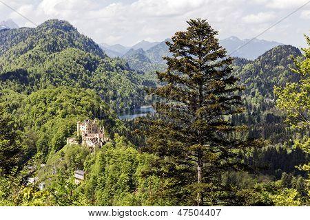 Hohenschwangau Surrounding By Greenery