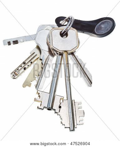 bunch of keys with touch memory key isolated on white background poster
