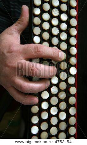The Keyboard Of A Bayan