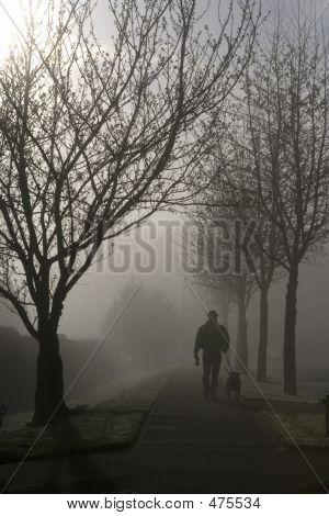 Fogy Morning Stroll