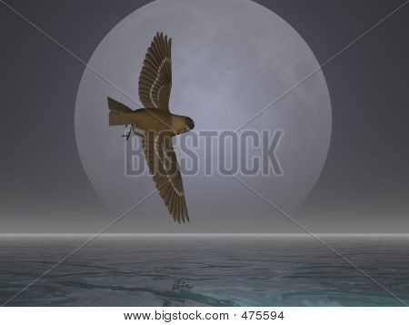 bird flying in front of the moon poster