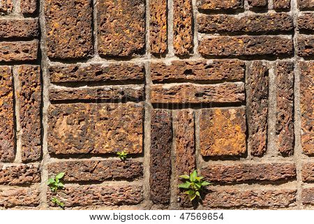 stone brick wall with plants
