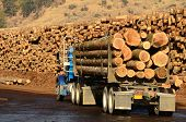 A log truck delivers its load to a sawmill in Oregon poster